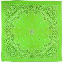 Lime Paisley Skull Cotton Bandanna Scarf Headwear Covering
