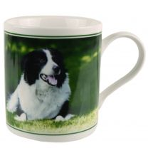 Fine China Collie and Sheep Mug/Cup by The Leonardo Colection Gift Boxed